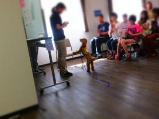 聴導犬デモンストレーション