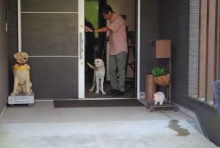 落ち着くのを待って玄関からでます。