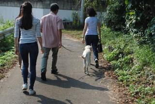 歩調を合わせ、上手に散歩。